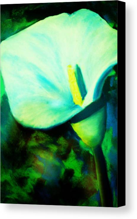 White Calla Lily Canvas Print featuring the painting Calla Lily by Melinda Etzold