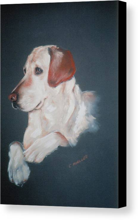Dog Canvas Print featuring the painting Casey by Carol Mueller