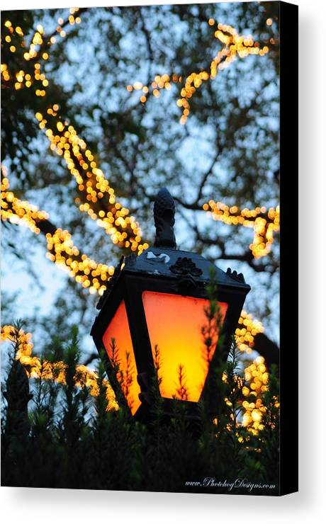Central Park Canvas Print featuring the photograph Central Park 6546 by PhotohogDesigns