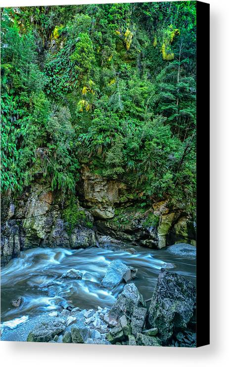 New Zealand Canvas Print featuring the photograph Charming Creek Walkway 2 by Robert Green