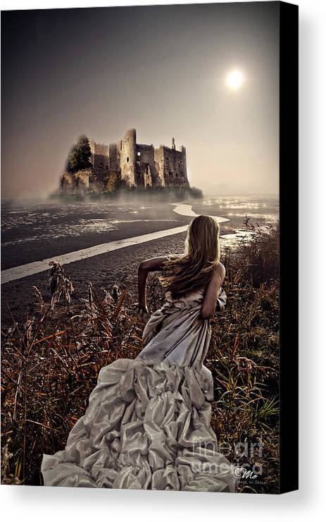 Chasing The Dreams Canvas Print featuring the photograph Chasing The Dreams by Mo T