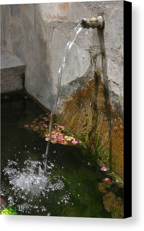 Photographer Canvas Print featuring the photograph Cherin 8 by Jez C Self