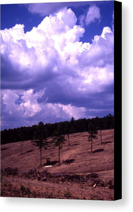 Canvas Print featuring the photograph Clear-cut by Curtis J Neeley Jr