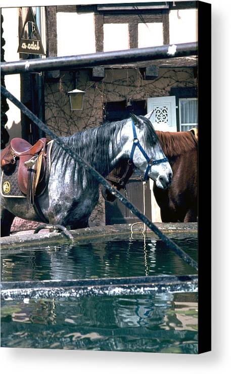 Colmar Canvas Print featuring the photograph Colmar II by Flavia Westerwelle