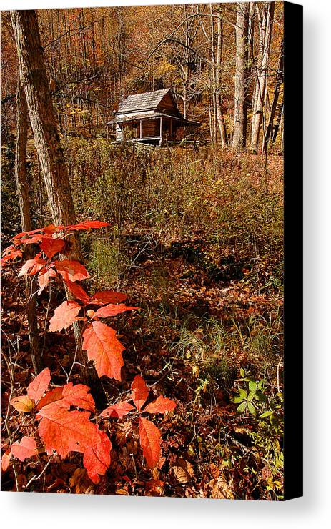 Log Cabin Canvas Print featuring the photograph Cook Cabin by Alan Lenk