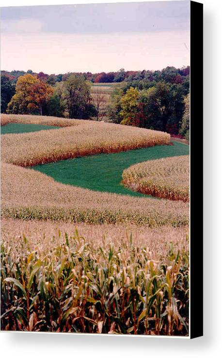 Photograph Canvas Print featuring the photograph Corn Field by William Burgess