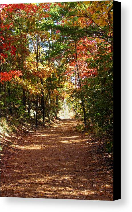 Fall Canvas Print featuring the photograph Country Path by Ralph Perdomo