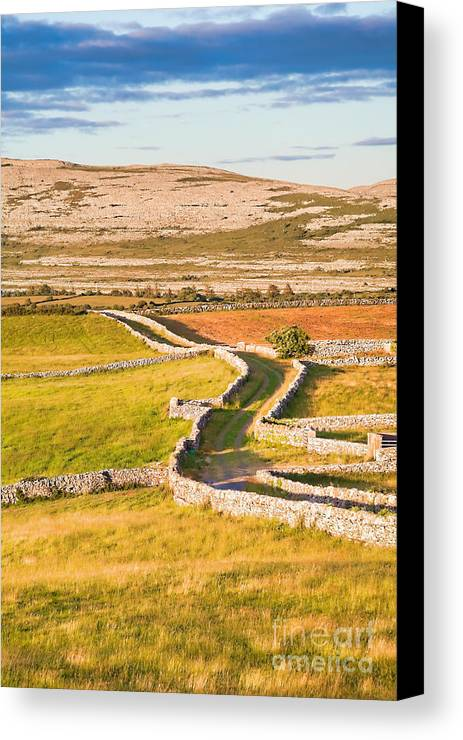 Road Canvas Print featuring the photograph Countryside Road by Gabriela Insuratelu