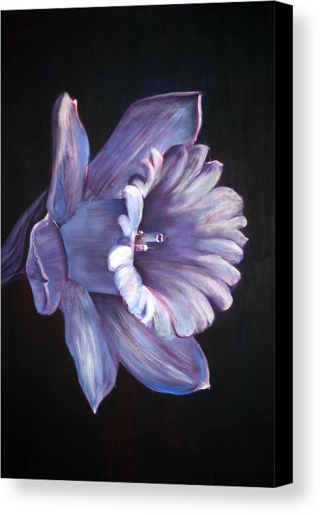 Flower Canvas Print featuring the painting Daffodil by Fiona Jack