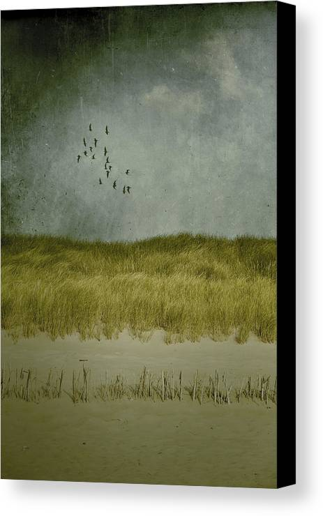 Dune Canvas Print featuring the photograph Dunes by Joana Kruse