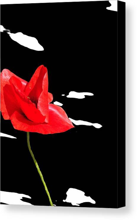 Poppy Canvas Print featuring the mixed media Elegant Poppy by Martine Affre Eisenlohr