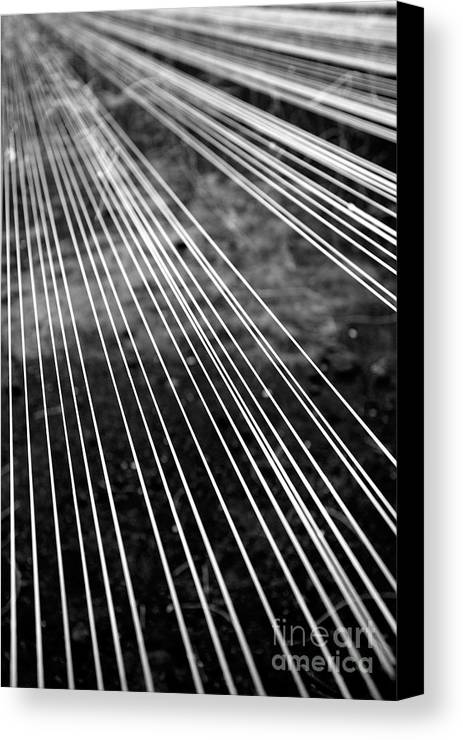 Abstract Canvas Print featuring the photograph Fishing Lines by Gaspar Avila