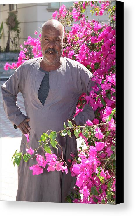 Al-ahyaa Canvas Print featuring the photograph Floraman by Jez C Self
