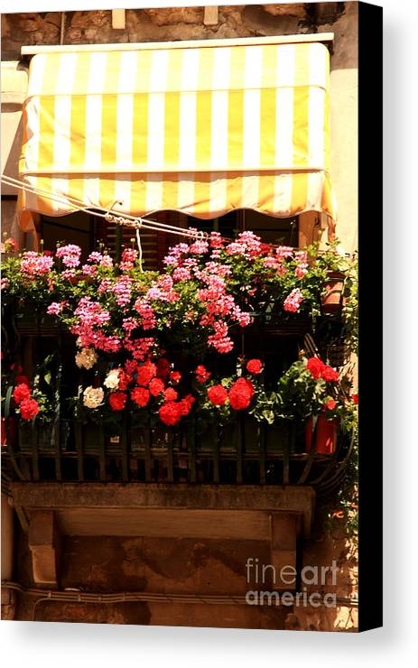Flowers Canvas Print featuring the photograph Flowers And Awning In Venice by Michael Henderson