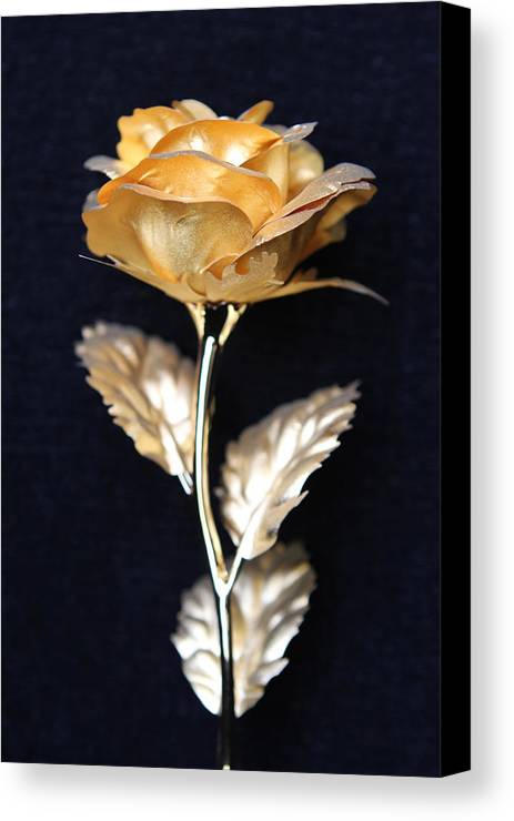 Golden Rose Canvas Print featuring the photograph Golden Rose 1 by Sladjana Lazarevic