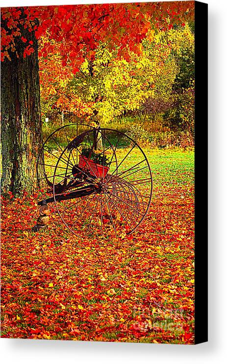 Diane Berry Canvas Print featuring the photograph Gone With The Wind by Diane E Berry
