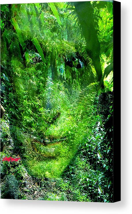 Nature Canvas Print featuring the digital art Green Man by Seth Weaver