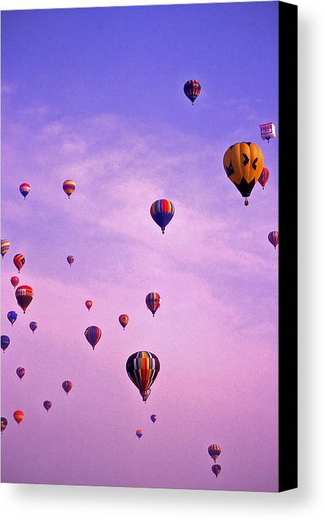 Hot Air Balloon Canvas Print featuring the photograph Hot Air Balloon - 13 by Randy Muir
