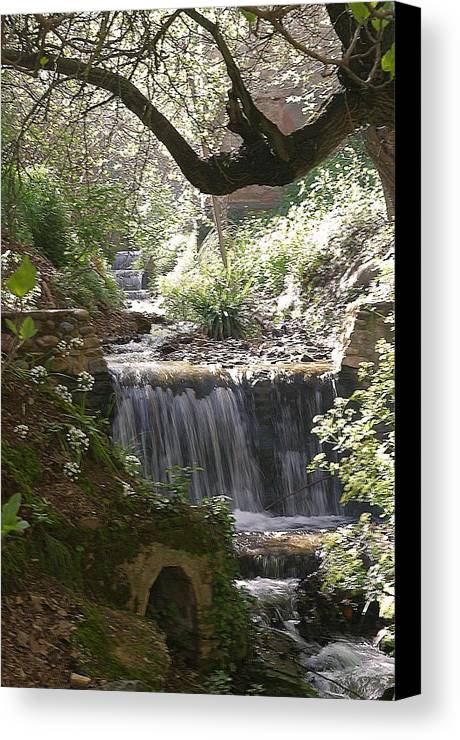 Jez C Self Canvas Print featuring the photograph I Could Sit Here All Day by Jez C Self