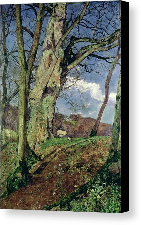 In Early Spring: A Study In March (oil On Canvas) By John William Inchbold (1830-88) Canvas Print featuring the painting In Early Spring by John William Inchbold