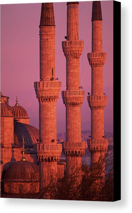 Vertical Canvas Print featuring the photograph Istanbul, Turkey, Blue Mosque by Grant Faint