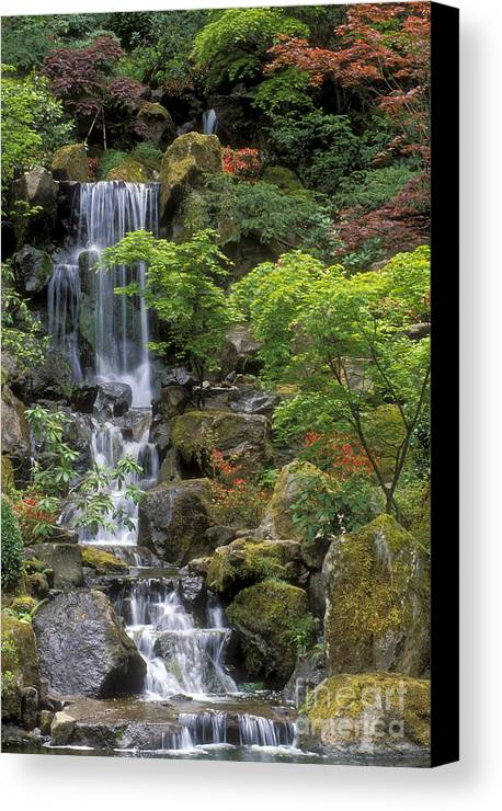 Waterfall Canvas Print featuring the photograph Japanese Garden Waterfall by Sandra Bronstein