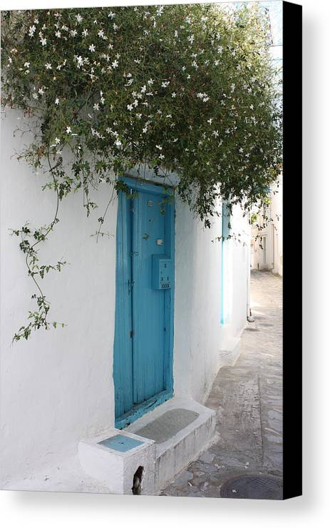 Door Canvas Print featuring the photograph Jasmine And Blue Door by Yvonne Ayoub