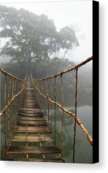 Absence Canvas Print featuring the photograph Jungle Journey 2 by Skip Nall