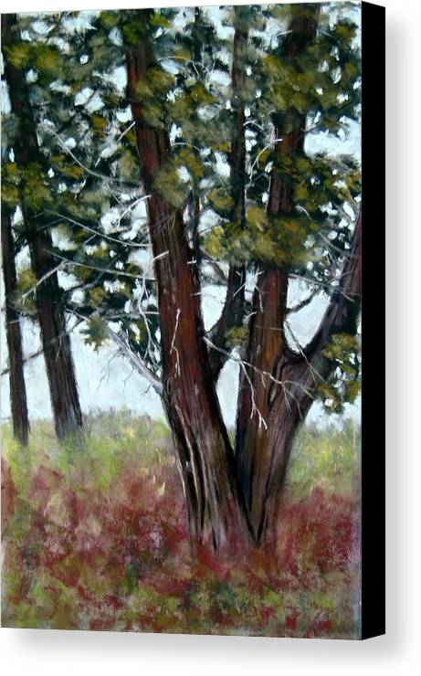 Landscape Canvas Print featuring the painting Juniper by Carl Capps