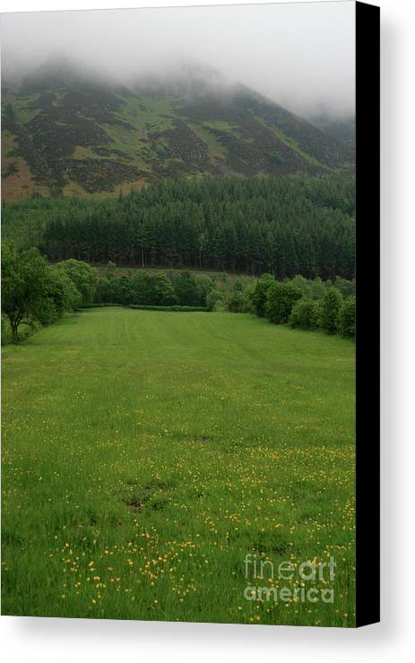 Meadow Canvas Print featuring the photograph Lakeland Meadow by Andy Mercer