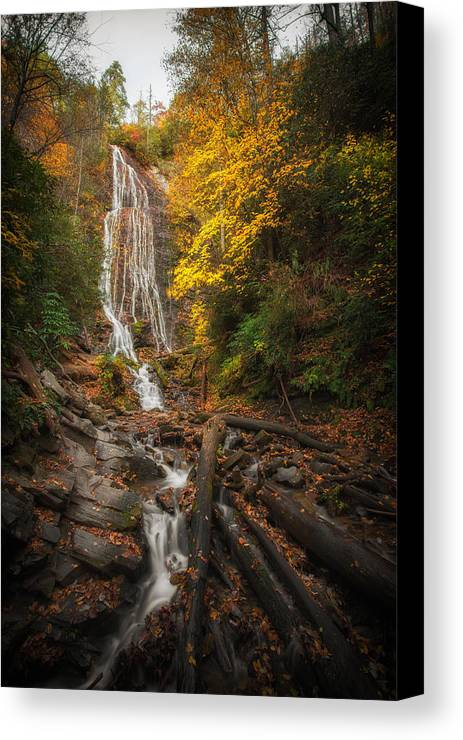 Fall Canvas Print featuring the photograph leaves on Mingo by Jennifer Luzio