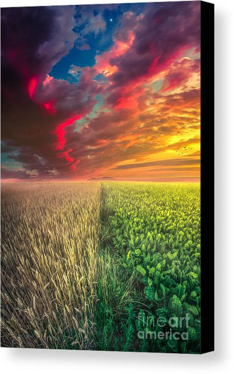 Life Canvas Print featuring the photograph Life In Abundance by John Noe