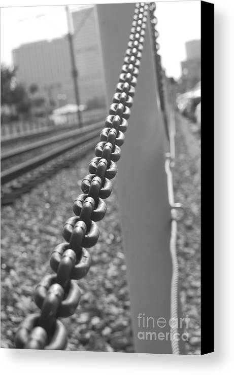 Metal Canvas Print featuring the photograph Links by Jessa DeNuit