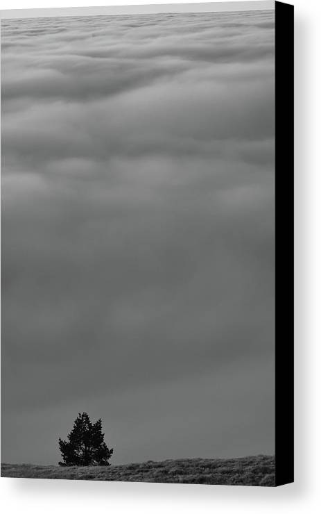 Landscapes Canvas Print featuring the photograph Loneliness by Daniel Balakov