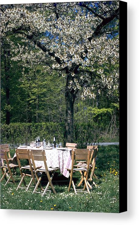 Lunch Canvas Print featuring the photograph Lunch by Flavia Westerwelle