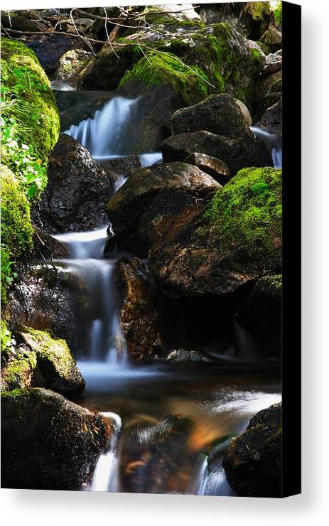 Waterfalls Canvas Print featuring the photograph Mens Retreat by Taylor Howe