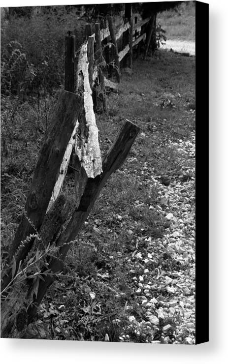 Ansel Adams Canvas Print featuring the photograph Momsvisitfence2 by Curtis J Neeley Jr
