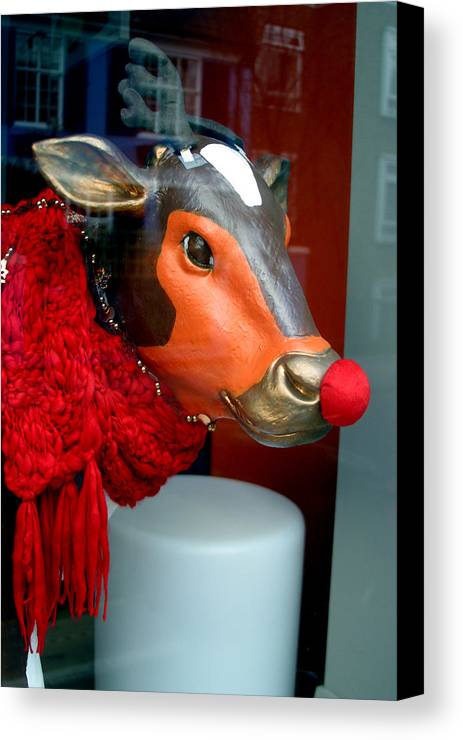 Jez C Self Canvas Print featuring the photograph Mooving On by Jez C Self