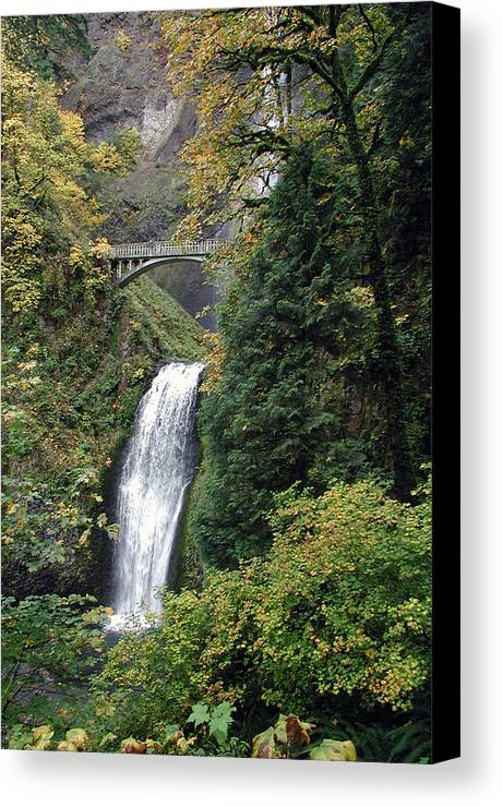 Multnomah Canvas Print featuring the photograph Multnomah Falls 3 by D'Arcy Evans