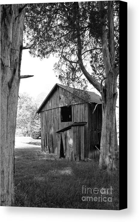 Landscape Canvas Print featuring the photograph Old Structures by Todd Blanchard