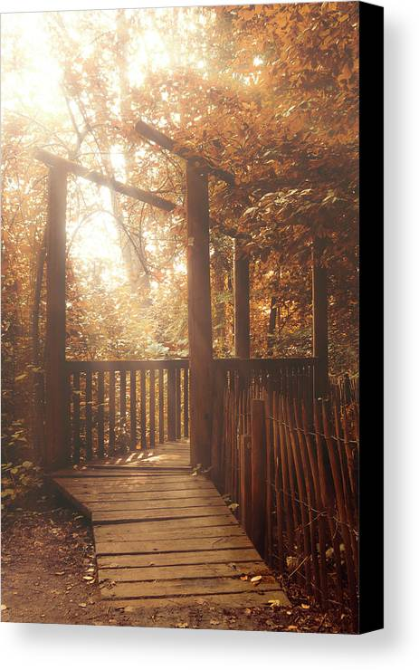 Pathway Canvas Print featuring the photograph Pathway by Wim Lanclus