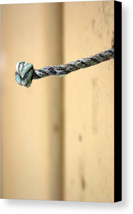 Photographer Canvas Print featuring the photograph Picena 24 by Jez C Self