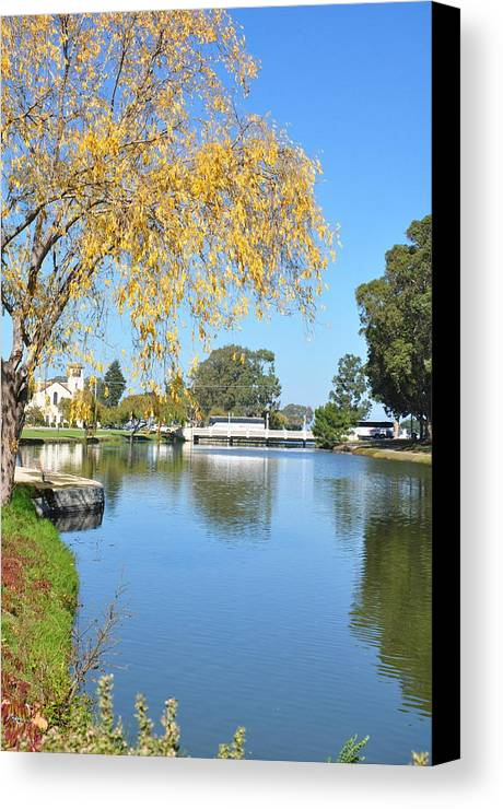 Water Canvas Print featuring the photograph Placid by Vijay Sharon Govender
