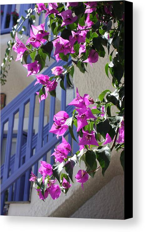 Greece Canvas Print featuring the photograph Purple And Blue by Yvonne Ayoub