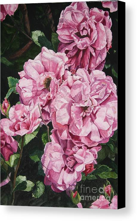 Floral Canvas Print featuring the painting Ramblin Rose by Helen Shideler