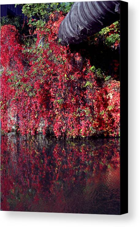 Jez C Self Canvas Print featuring the photograph Red Waste by Jez C Self
