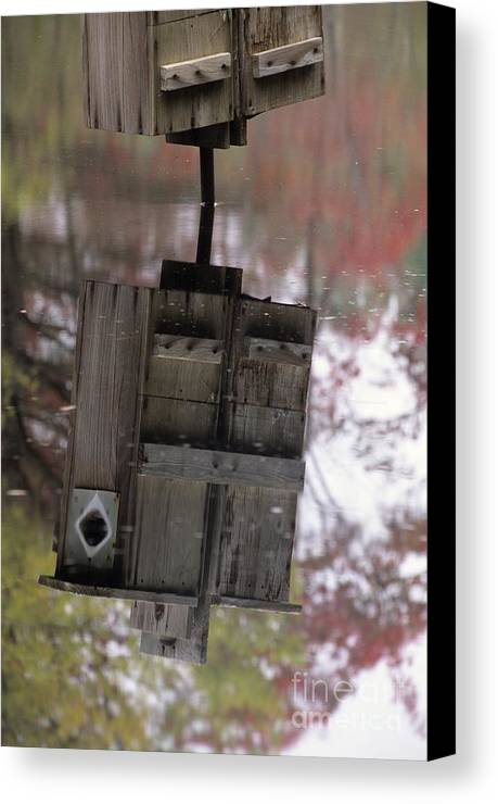 Wood Duck Canvas Print featuring the photograph Reflection Of Wood Duck Box In Pond by Erin Paul Donovan