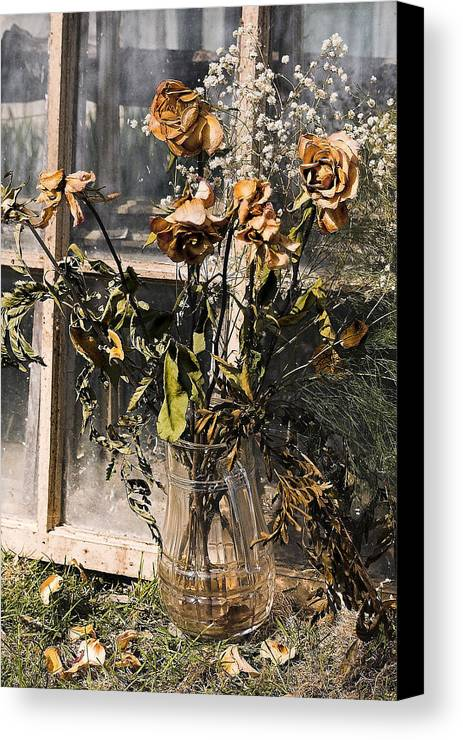Windows Canvas Print featuring the photograph Remnants Of The Past by Linda McRae
