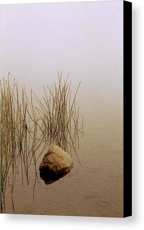 Calm Canvas Print featuring the photograph Rock And Reeds On Foggy Morning by Roger Soule