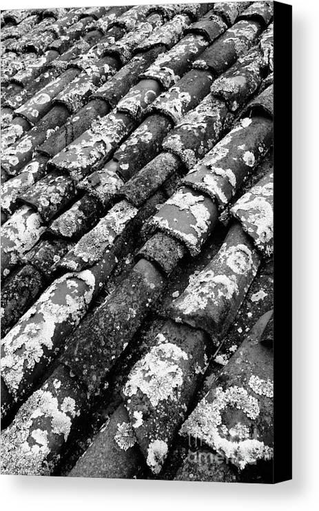 Ceramics Canvas Print featuring the photograph Roof Tiles by Gaspar Avila